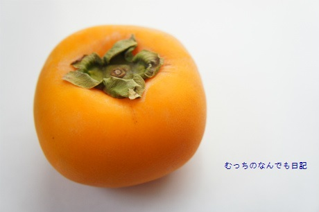 food_N1504.jpg